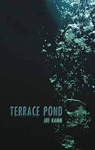 Terrace Pond by Joe Kamm