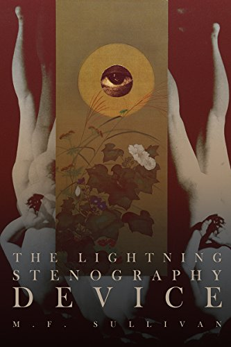The Lightning Stenography Device: A Psychedelic Odyssey by M. F. Sullivan