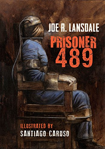 Prisoner 489 (Black Labyrinth Book 2) by Joe Lansdale