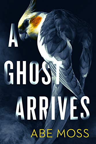 A Ghost Arrives: A Novel by Abe Moss