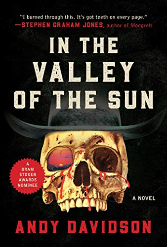 In the Valley of the Sun: A Novel by Andy Davidson